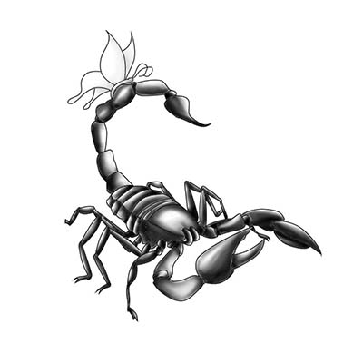 Cool Black Ink Scorpion Designs Fake Temporary Water Transfer Tattoo Stickers NO.10154