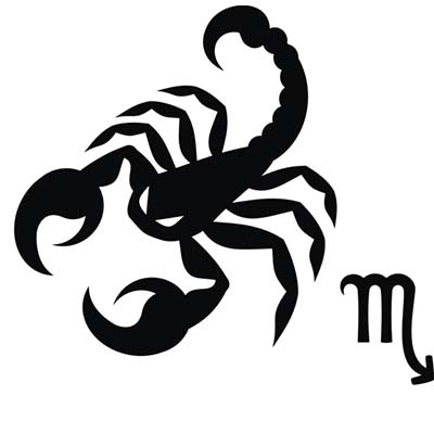 Scorpio designs Fake Temporary Water Transfer Tattoo Stickers NO.10174