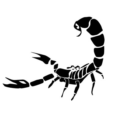 Scorpion simple scorpion on hand Fake Temporary Water Transfer Tattoo Stickers NO.10158