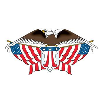 American Eagle with Flags Design Water Transfer Temporary Tattoo(fake Tattoo) Stickers NO.12049