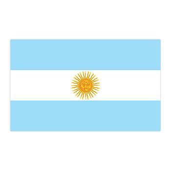 Argentina Flag Design Water Transfer Temporary Tattoo(fake Tattoo) Stickers NO.12709