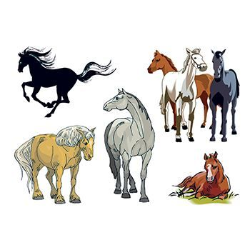 Assorted Horsess Design Water Transfer Temporary Tattoo(fake Tattoo) Stickers NO.13499