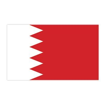 Bahrain Flag Design Water Transfer Temporary Tattoo(fake Tattoo) Stickers NO.12702