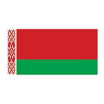 Belarus Flag Design Water Transfer Temporary Tattoo(fake Tattoo) Stickers NO.12713