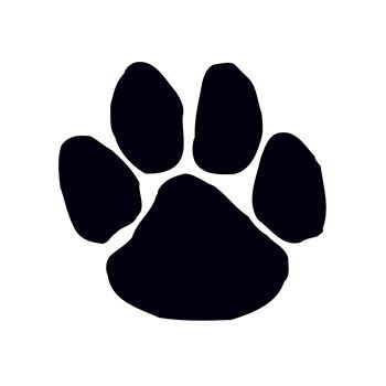 Small Black Paw Print Design Water Transfer Temporary Tattoo(fake Tattoo) Stickers NO.14894