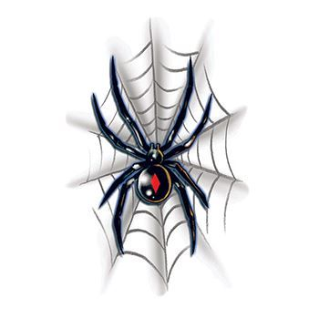 Black Widow with Web Design Water Transfer Temporary Tattoo(fake Tattoo) Stickers NO.13520