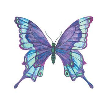 Blue Butterfly Design Water Transfer Temporary Tattoo(fake Tattoo) Stickers NO.13748