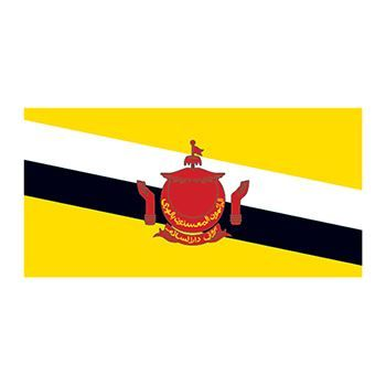 Brunei Flags Design Water Transfer Temporary Tattoo(fake Tattoo) Stickers NO.11911