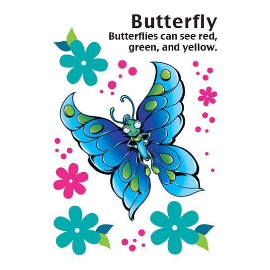 Cartoon Butterfly Design Water Transfer Temporary Tattoo(fake Tattoo) Stickers NO.13732