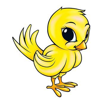 Chick Design Water Transfer Temporary Tattoo(fake Tattoo) Stickers NO.13529