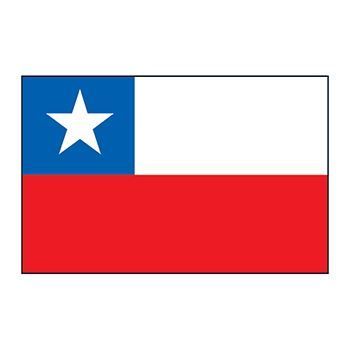 Chile Flag Design Water Transfer Temporary Tattoo(fake Tattoo) Stickers NO.12740