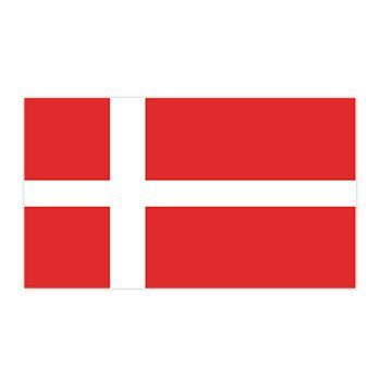 Denmark Flag Design Water Transfer Temporary Tattoo(fake Tattoo) Stickers NO.12790