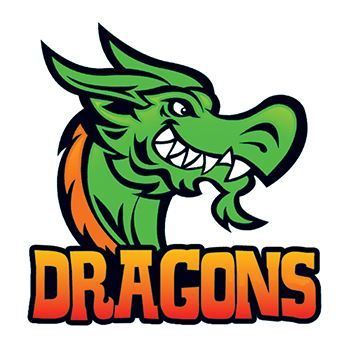 Dragons Sports Design Water Transfer Temporary Tattoo(fake Tattoo) Stickers NO.14963