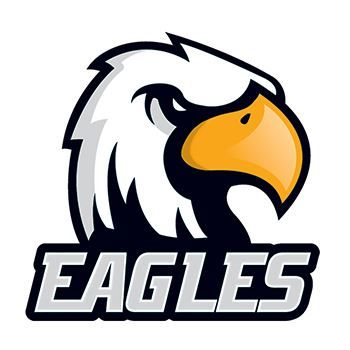 Eagles Design Water Transfer Temporary Tattoo(fake Tattoo) Stickers NO.14971