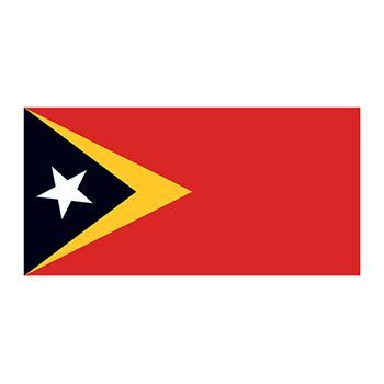 East Timor Flag Design Water Transfer Temporary Tattoo(fake Tattoo) Stickers NO.11872