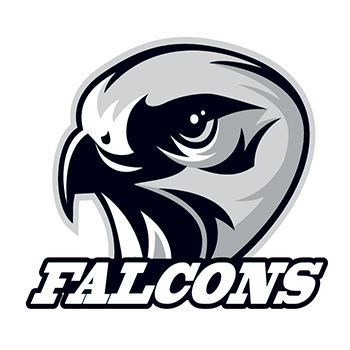 Falcons Design Water Transfer Temporary Tattoo(fake Tattoo) Stickers NO.13164