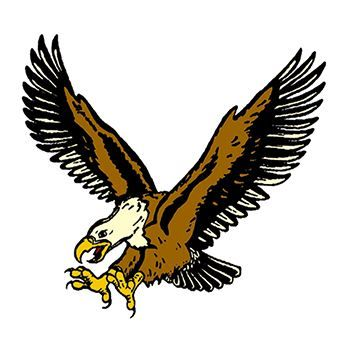 Flyin Eagle Design Water Transfer Temporary Tattoo(fake Tattoo) Stickers NO.12040