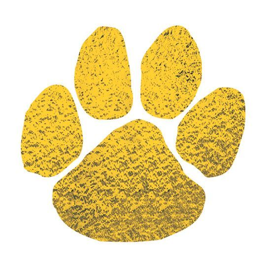 Metallic Gold Paw Design Water Transfer Temporary Tattoo(fake Tattoo) Stickers NO.13163