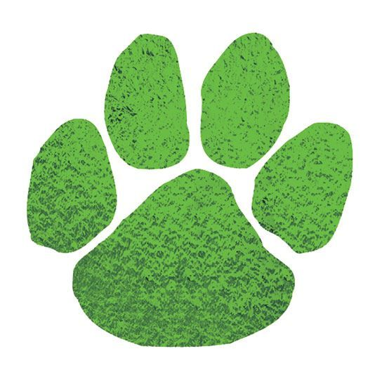 Metallic Green Paw Design Water Transfer Temporary Tattoo(fake Tattoo) Stickers NO.15022