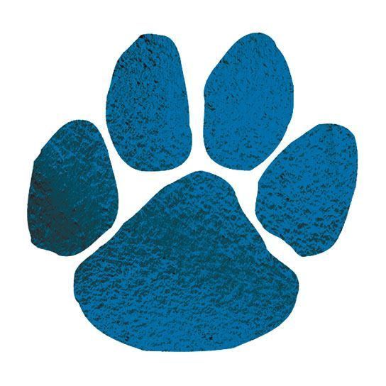 Metallic Navy Blue Paw Design Water Transfer Temporary Tattoo(fake Tattoo) Stickers NO.14657