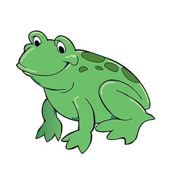 Frog Design Water Transfer Temporary Tattoo(fake Tattoo) Stickers NO.13893