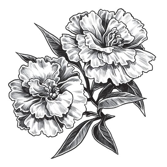 Gray Carnation Design Water Transfer Temporary Tattoo(fake Tattoo) Stickers NO.12945