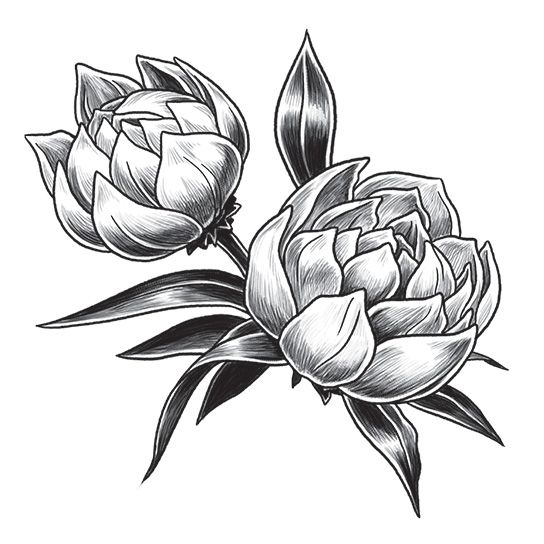 Gray Tulip Design Water Transfer Temporary Tattoo(fake Tattoo) Stickers NO.12933