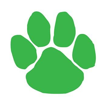 Green Paw Print Design Water Transfer Temporary Tattoo(fake Tattoo) Stickers NO.13138