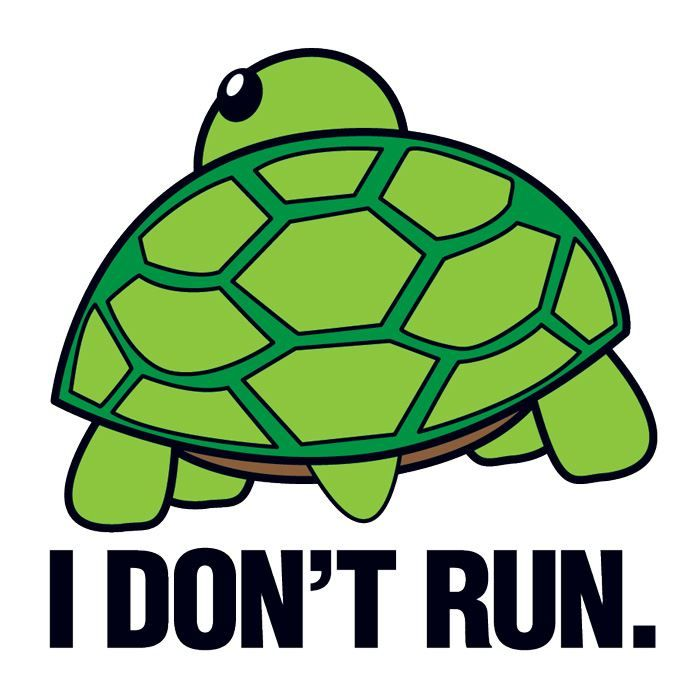 I Don't Run Turtle Design Water Transfer Temporary Tattoo(fake Tattoo) Stickers NO.15201
