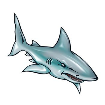 Illustrated Shark Design Water Transfer Temporary Tattoo(fake Tattoo) Stickers NO.13629