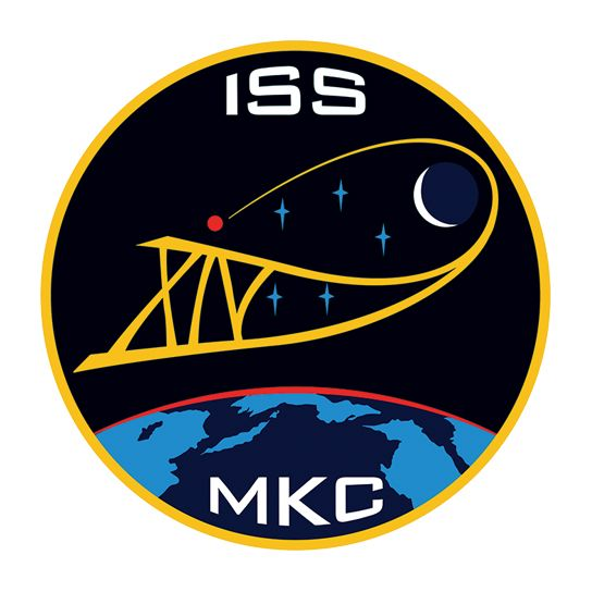 ISS NASA Design Water Transfer Temporary Tattoo(fake Tattoo) Stickers NO.14464