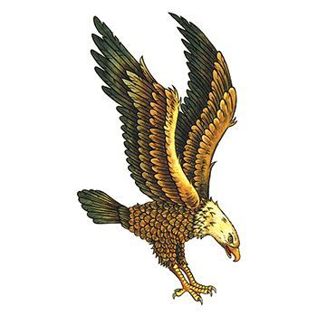 Majestic Eagle Design Water Transfer Temporary Tattoo(fake Tattoo) Stickers NO.13554