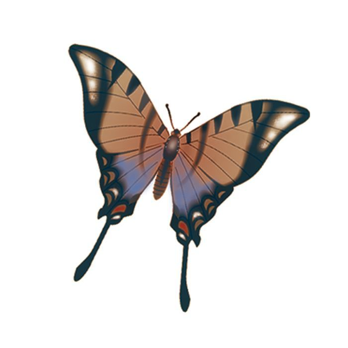 Monarch Butterfly Angled Design Water Transfer Temporary Tattoo(fake Tattoo) Stickers NO.13560