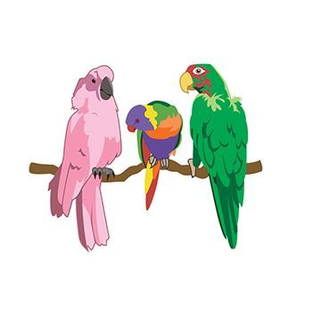 Parrots Design Water Transfer Temporary Tattoo(fake Tattoo) Stickers NO.13550