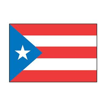 Puerto Rico Country Flag Design Water Transfer Temporary Tattoo(fake Tattoo) Stickers NO.12758