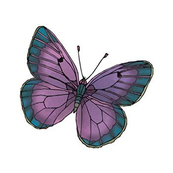 Purple and Green Butterfly Design Water Transfer Temporary Tattoo(fake Tattoo) Stickers NO.13773