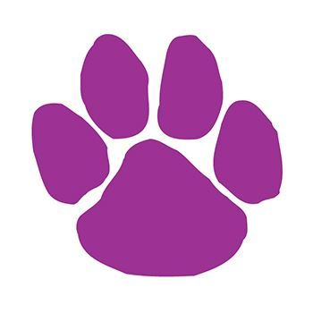 Purple Paw Print Design Water Transfer Temporary Tattoo(fake Tattoo) Stickers NO.13059