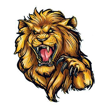 Roaring Lion Design Water Transfer Temporary Tattoo(fake Tattoo) Stickers NO.13576