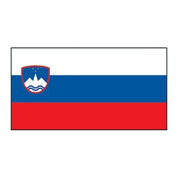 Slovenia Flag Design Water Transfer Temporary Tattoo(fake Tattoo) Stickers NO.12764