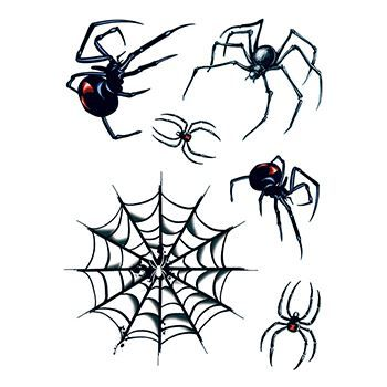 Spider and Webs Design Water Transfer Temporary Tattoo(fake Tattoo) Stickers NO.13688