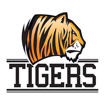 Tigers Team Design Water Transfer Temporary Tattoo(fake Tattoo) Stickers NO.13162