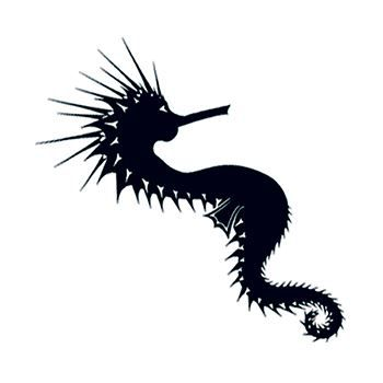 Tribal Sea Horse Design Water Transfer Temporary Tattoo(fake Tattoo) Stickers NO.13607