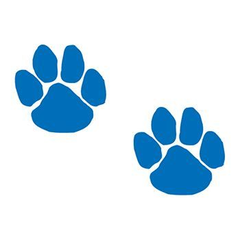 Two Blue Paws Design Water Transfer Temporary Tattoo(fake Tattoo) Stickers NO.15155