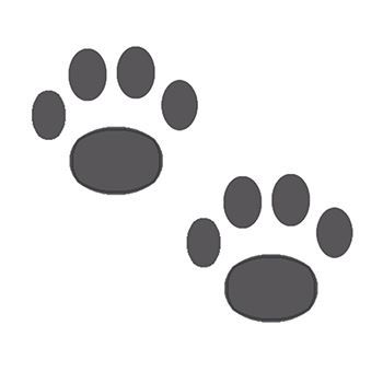 Two Paws Design Water Transfer Temporary Tattoo(fake Tattoo) Stickers NO.13081
