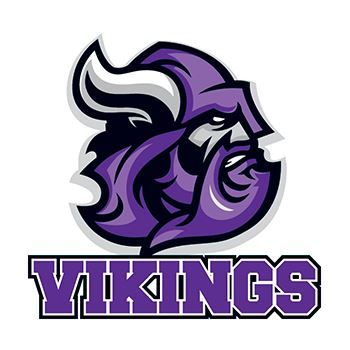 Vikings Sports Design Water Transfer Temporary Tattoo(fake Tattoo) Stickers NO.15164