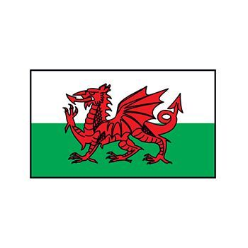 Wales Flag Design Water Transfer Temporary Tattoo(fake Tattoo) Stickers NO.12752