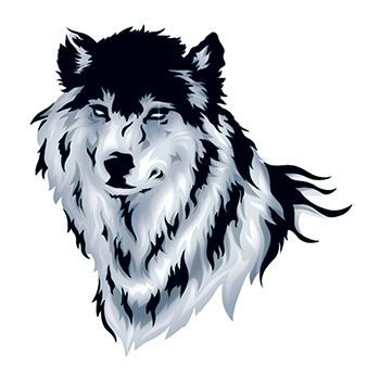 Wolf Design Water Transfer Temporary Tattoo(fake Tattoo) Stickers NO.13536