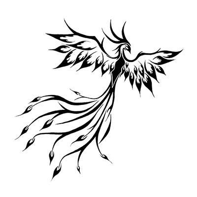 Classic tribal phoenix and ideas Design Water Transfer Temporary Tattoo(fake Tattoo) Stickers NO.10695
