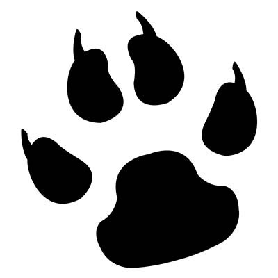 Dogs Footprint On Foot For Girls Design Water Transfer Temporary Tattoo(fake Tattoo) Stickers NO.10771