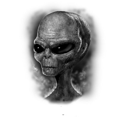 Grey Alien Skull Design Water Transfer Temporary Tattoo(fake Tattoo) Stickers NO.10847